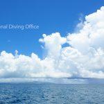 夏の雲。 この季節の到来を分かりやすく教えてくれる。