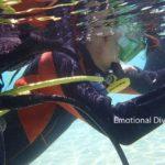 体験ダイビングの練習風景