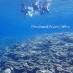 サンゴ礁の海でシュノーケリング。
