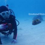 体験ダイバーとサカサクラゲ。