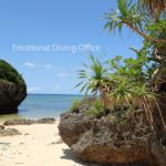 お昼休みのびーちにて、沖縄の海岸の原風景を楽しむ。