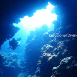 洞窟。揺らめく青い光が癒しをくれる。